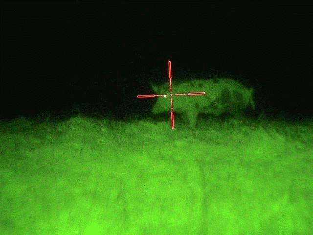 Ночное видение для охоты своими руками