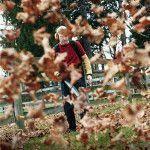 Садовый пылесос для листьев
