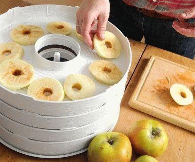 Укладка долек яблок в сушилку