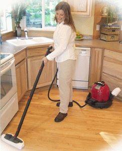 Домашний пароочиститель