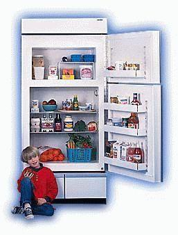 Выбор холодильника для дома
